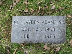 Joe Hayden Adams