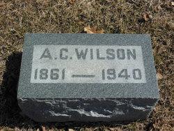 Albion Clark Wilson