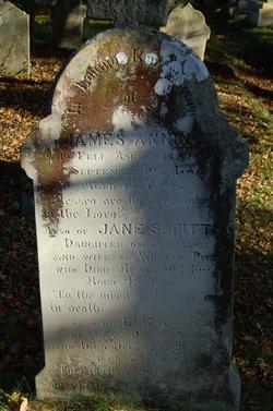 James Anning