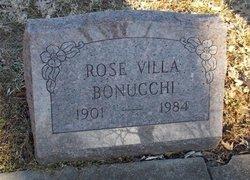 Rose <I>Villa</I> Boncchi