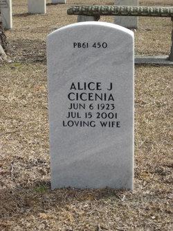 Alice Joan <I>Delaney</I> Cicenia