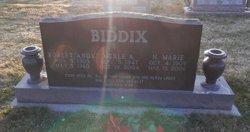 Nellie Marie Biddix