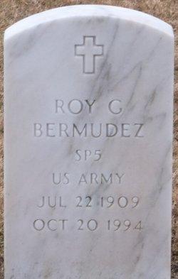 Roy G Bermudez