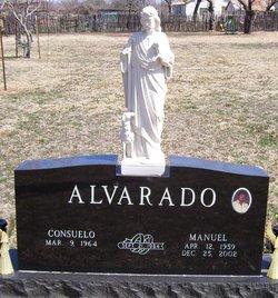 Manuel Alvarado