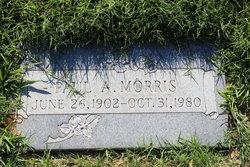 Paul A Morris