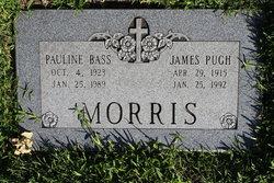 James Pugh Morris, Sr