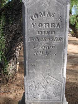 Tomás Antonio Yorba