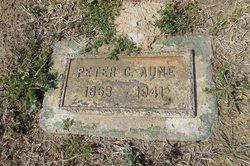 Peter Cornelius Aune