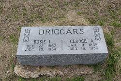 Rosie I. <I>Jordan</I> Driggars