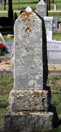 Dr George Washington Mullins