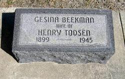 Gesina Katsina <I>Beekman</I> Todsen