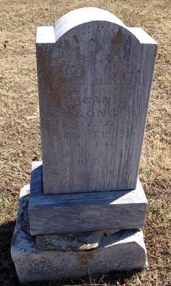 Logan B. Long