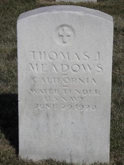 Thomas James Meadows