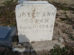 Joyce Ann Cowan