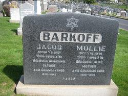 Molliie Barkoff
