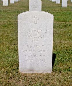 Harvey J Haessly