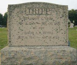 Sarah A.H. <I>Davoll</I> Tripp