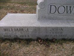 William J Dowling