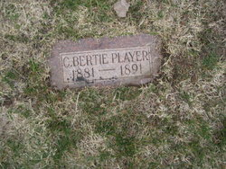 Albert Charles Player
