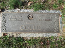Lee Collie
