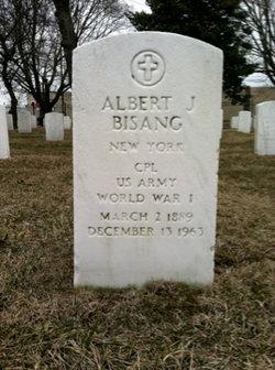 Albert John Bisang