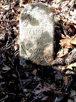 Alice F. Carter