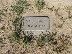 Mary Biltz