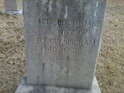 Elizabeth Jane <I>McDaniel</I> Garver