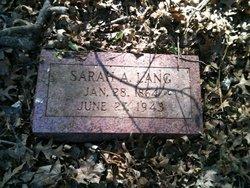 Sarah A. Lang