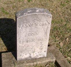Harvey Joy