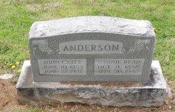 Nannie Irene <I>Read</I> Anderson