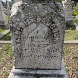 Albert S Babcock