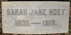 Sarah Jane Hoey