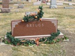 Mildred Ann <I>Noxon</I> Briggs
