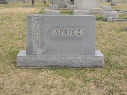 Morgan Lee Sprigg