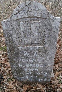 Margaret Ann <I>Lane</I> Bridges
