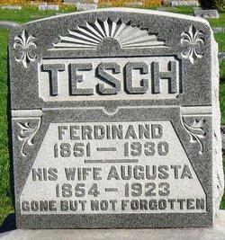 Ferdinand Ludwig Tesch
