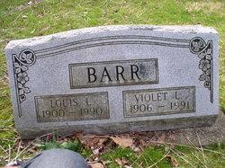 Violet Labinia <I>Snyder</I> Barr
