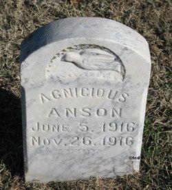 Agnicious Anson