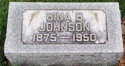 Bina B. Johnson