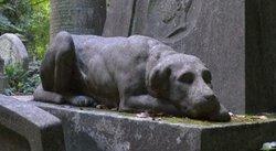 Headstone Hunter
