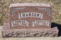 Edward Hansen