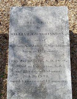 William Augustine Washington III