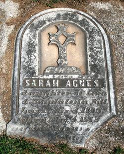 Sarah Agnes Will