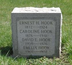 David E. Hook