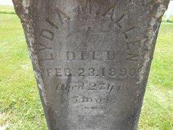 Lydia M. Allen
