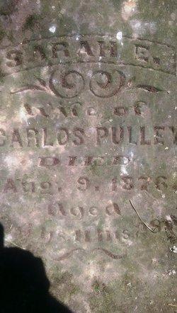 Sarah Ellen <I>Carpenter</I> Pulley