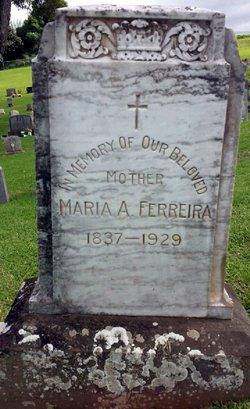Maria Augusta <I>Pereira</I> Ferreira