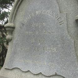 Samuel McColloch