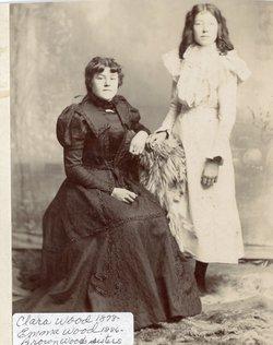 Mary Emma <I>Wood</I> Briggs